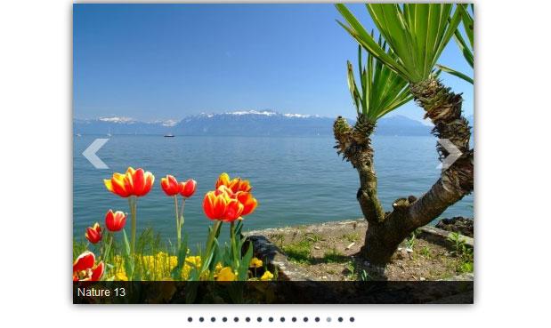 Скачать слайд шоу модуль для Joomla 1.5 и Joomla 1.6 - ARI Image Slider